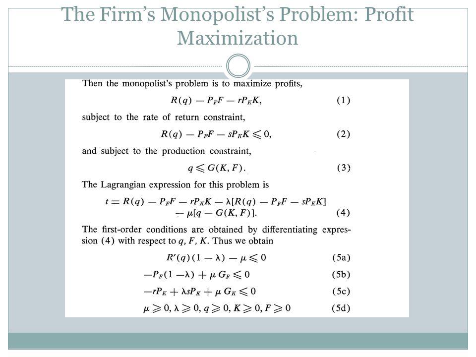 The Firm's Monopolist's Problem: Profit Maximization