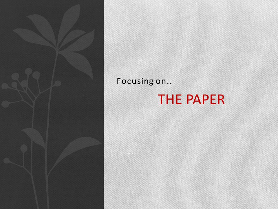 Focusing on.. THE PAPER