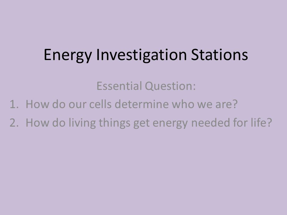 Energy Investigation Stations Essential Question: 1.How do our cells determine who we are.