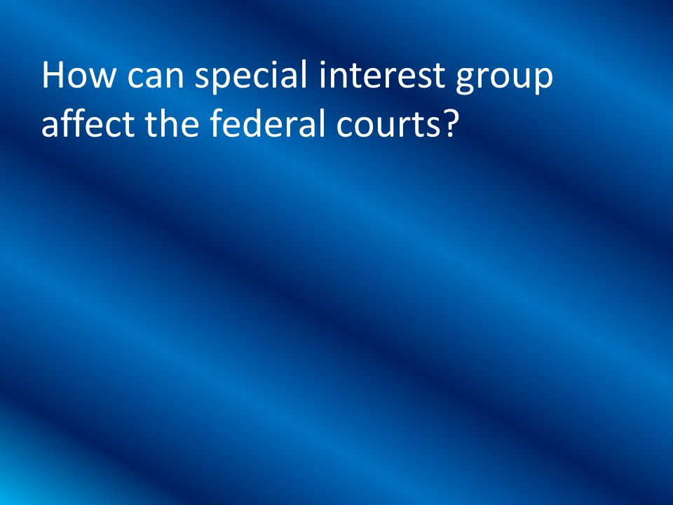 How can special interest group affect the federal courts?
