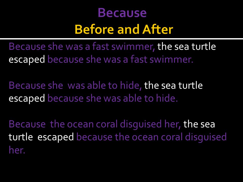 Yes, we can start a sentence with because If We follow it with an MST. Because she needed a place to lay her eggs, the turtle swam. (This is a complet