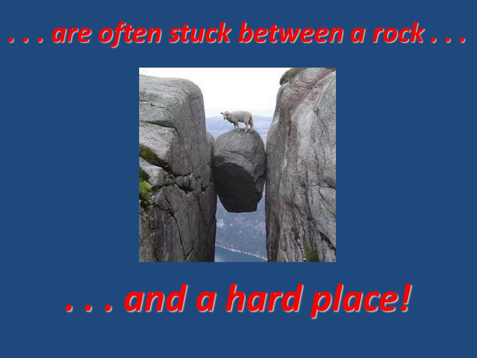 ... and a hard place!... are often stuck between a rock...