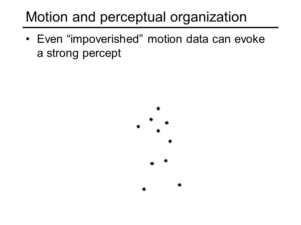Motion and perceptual organization Even impoverished motion data can evoke a strong percept
