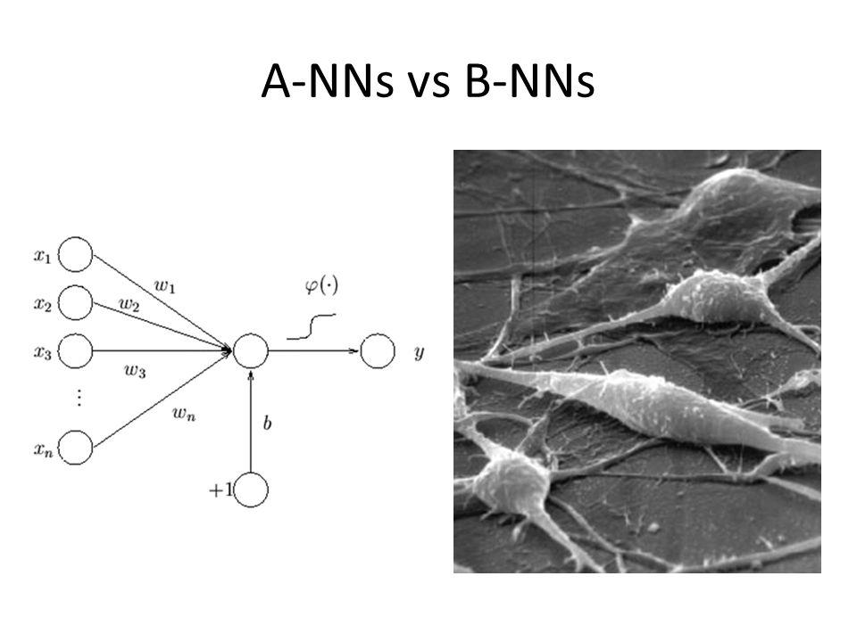A-NNs vs B-NNs