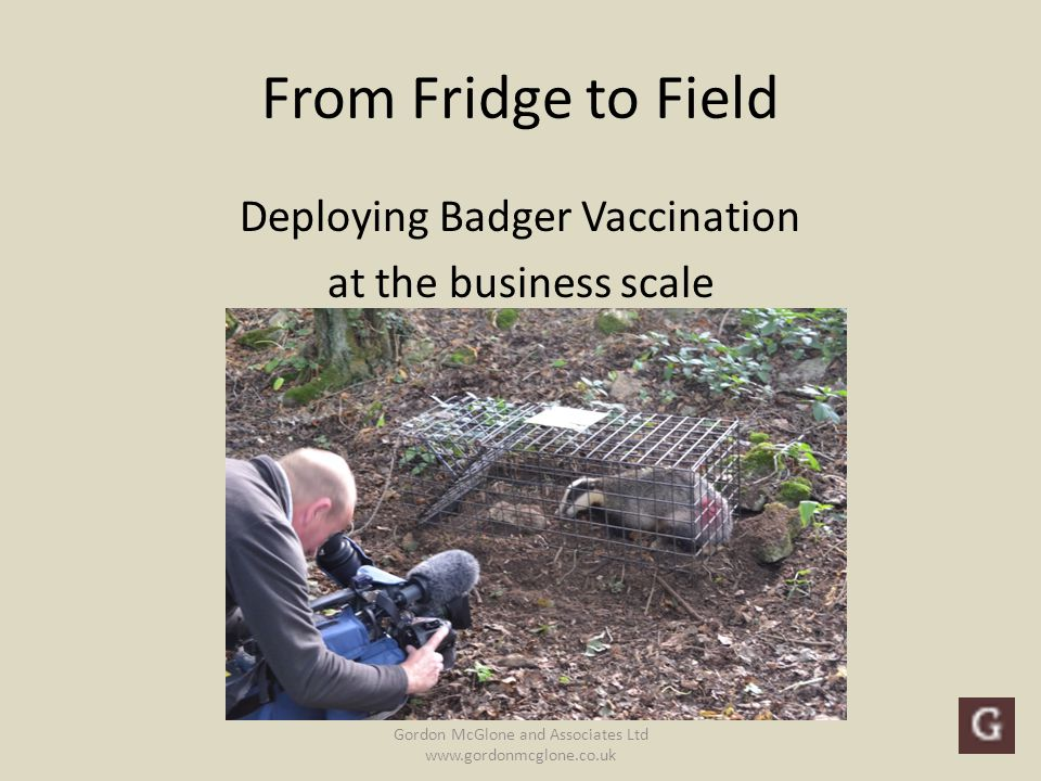 From Fridge to Field Deploying Badger Vaccination at the business scale Gordon McGlone and Associates Ltd www.gordonmcglone.co.uk The views expressed in this presentation are personal and do not represent those of any specific organisation unless referenced Gordon McGlone