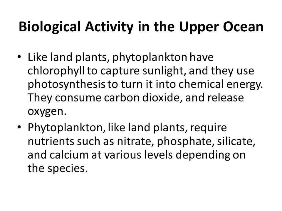 Biological Activity in the Upper Ocean Like land plants, phytoplankton have chlorophyll to capture sunlight, and they use photosynthesis to turn it in