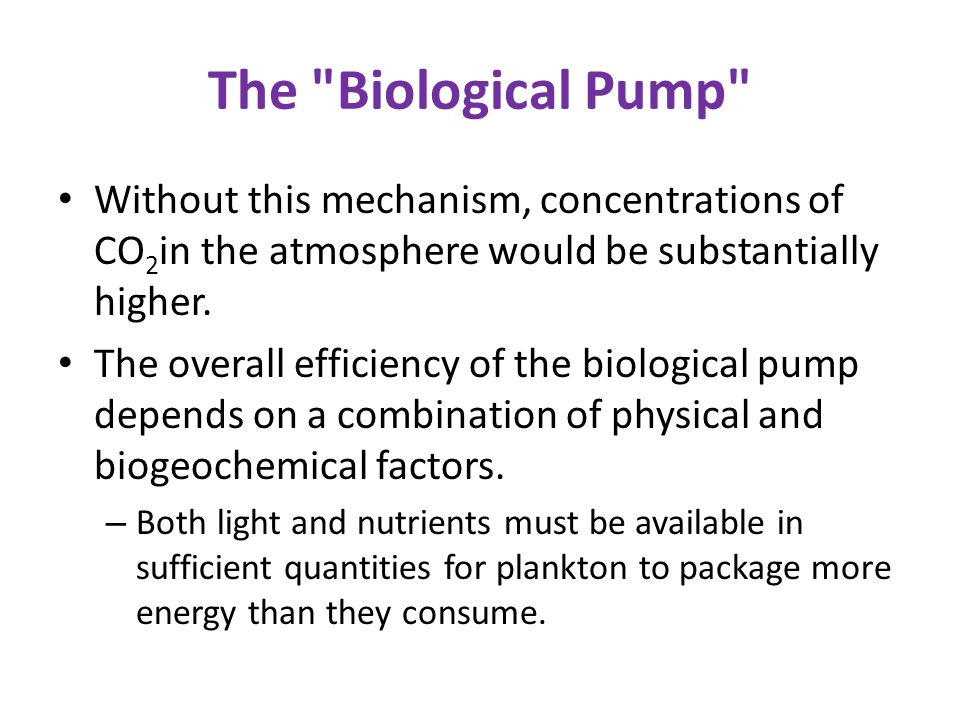 The Biological Pump Without this mechanism, concentrations of CO 2 in the atmosphere would be substantially higher.