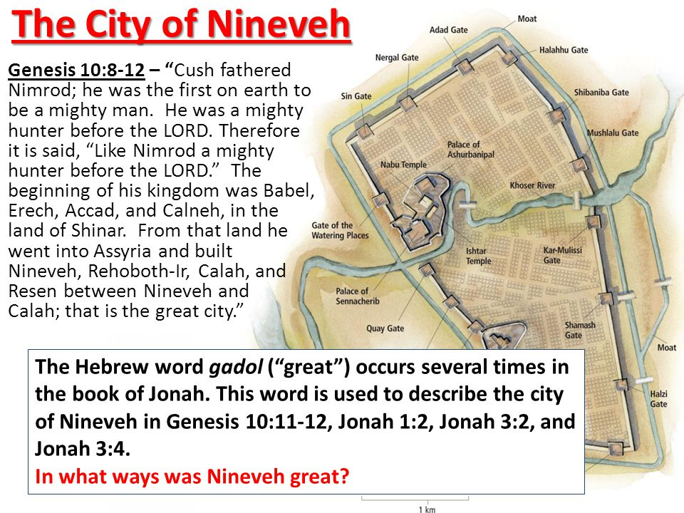 The City of Nineveh Genesis 10:8-12 – Cush fathered Nimrod; he was the first on earth to be a mighty man.