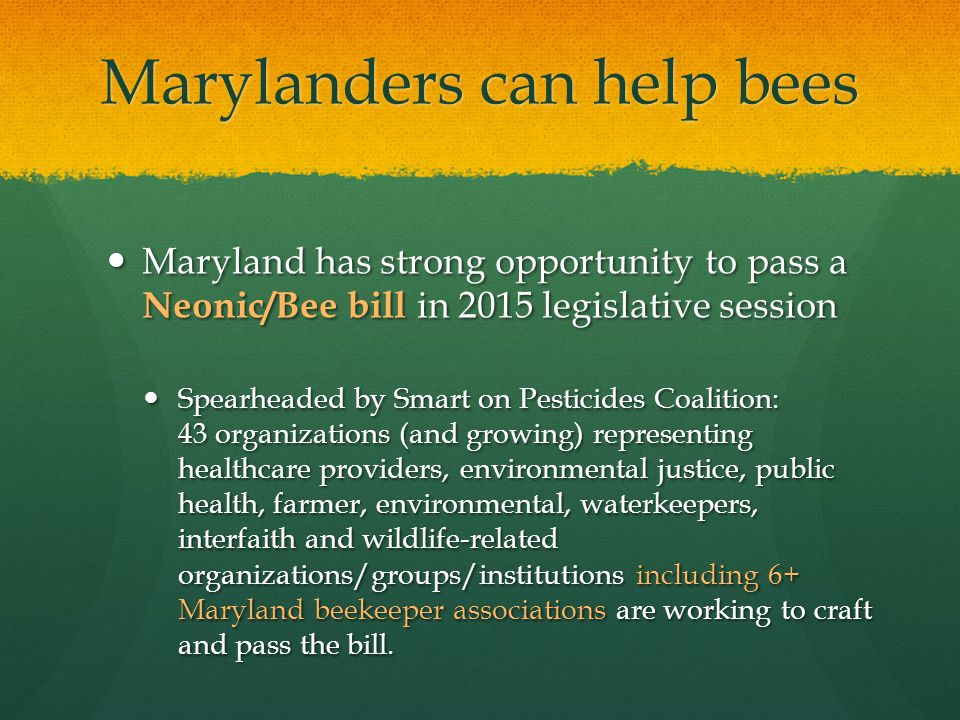 Marylanders can help bees Maryland has strong opportunity to pass a Neonic/Bee bill in 2015 legislative session Maryland has strong opportunity to pass a Neonic/Bee bill in 2015 legislative session Spearheaded by Smart on Pesticides Coalition: 43 organizations (and growing) representing healthcare providers, environmental justice, public health, farmer, environmental, waterkeepers, interfaith and wildlife-related organizations/groups/institutions including 6+ Maryland beekeeper associations are working to craft and pass the bill.