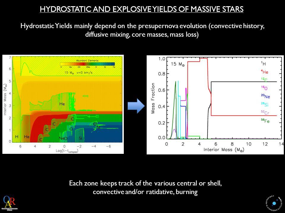 PRESUPERNOVA MODELS: ROTATING vs NON ROTATING STARS