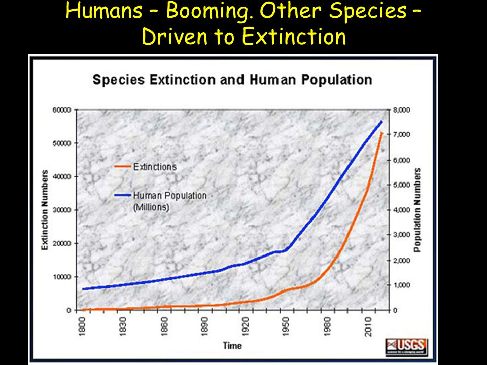Humans – Booming. Other Species – Driven to Extinction