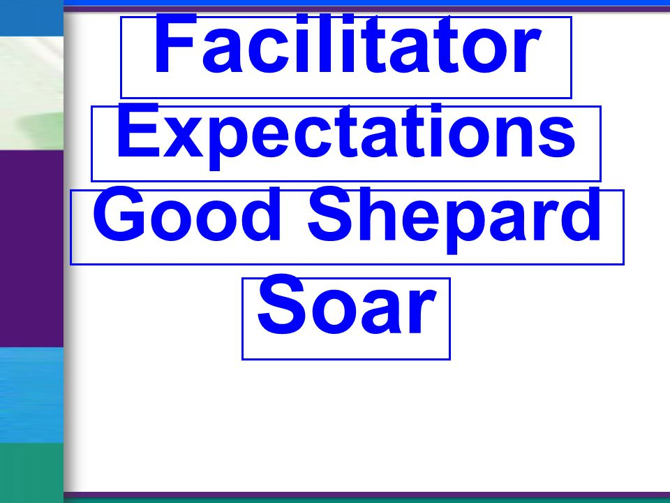 Facilitator Expectations Good Shepard Soar