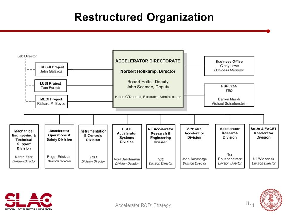 Restructured Organization Accelerator R&D: Strategy 11