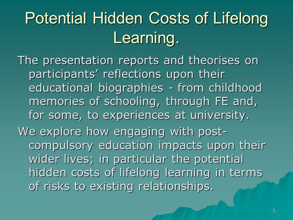 5 Potential Hidden Costs of Lifelong Learning.