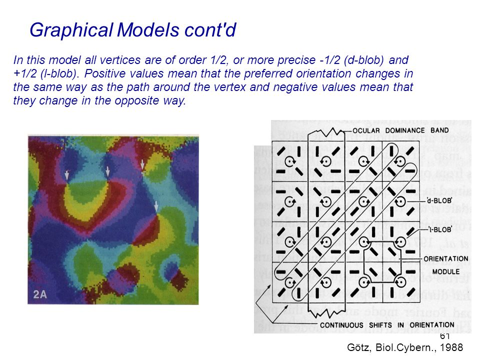 61 Graphical Models cont d In this model all vertices are of order 1/2, or more precise -1/2 (d-blob) and +1/2 (l-blob).