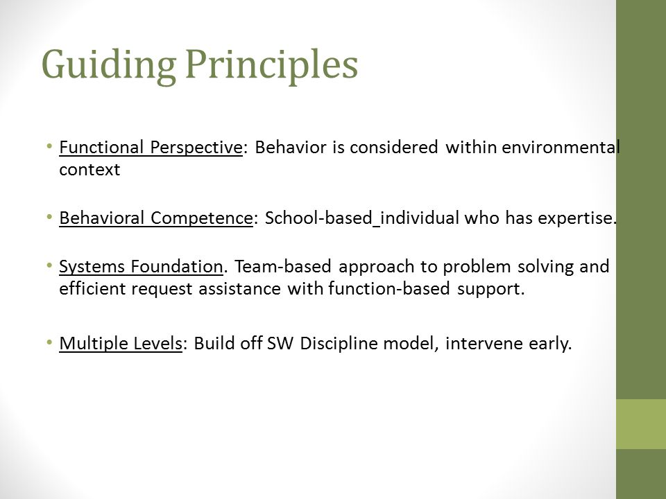 Guiding Principles Functional Perspective: Behavior is considered within environmental context Behavioral Competence: School-based individual who has expertise.