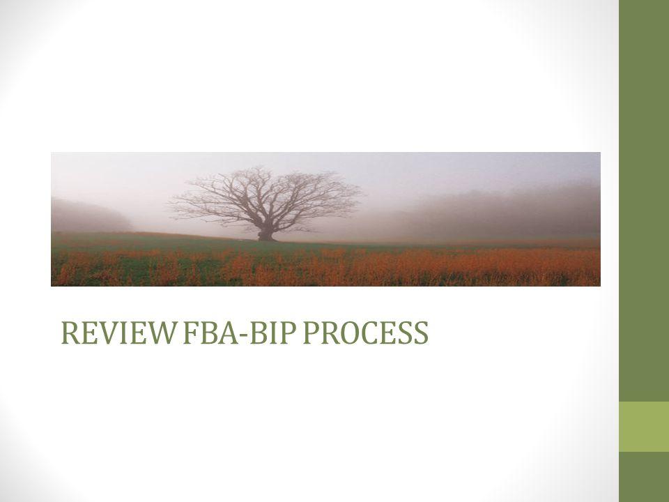 REVIEW FBA-BIP PROCESS