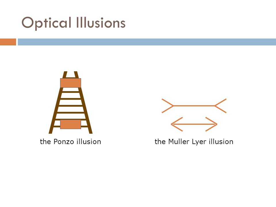 Optical Illusions the Ponzo illusionthe Muller Lyer illusion