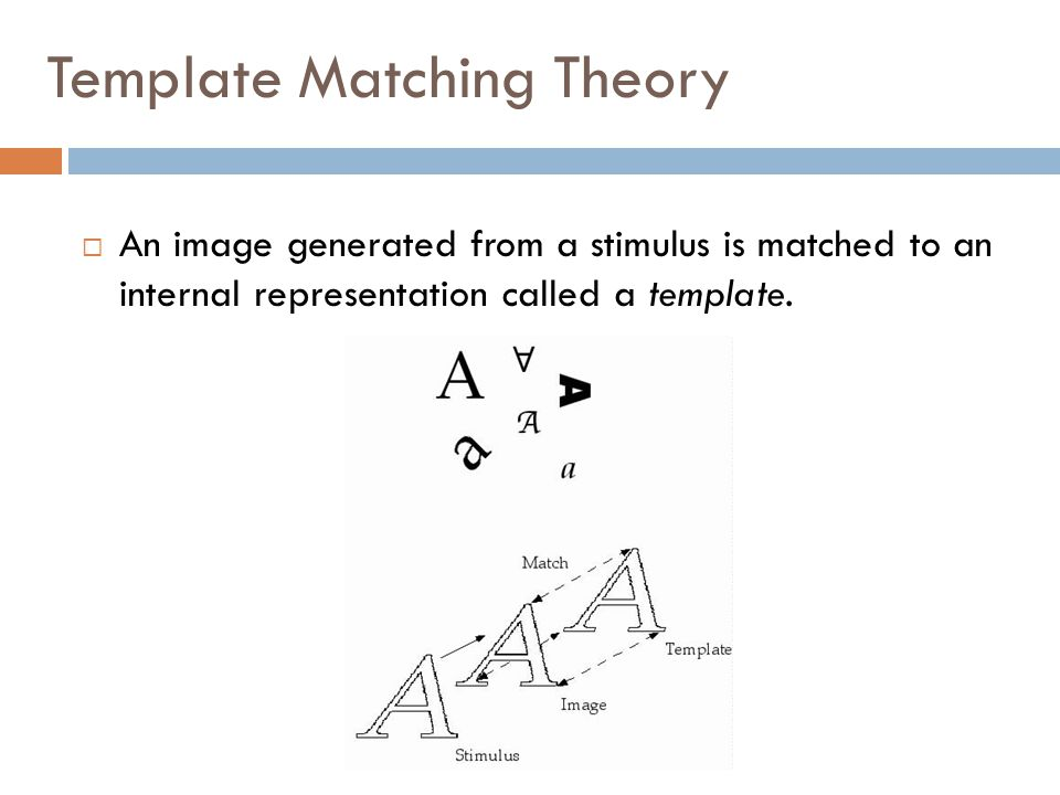 Template Matching Theory  An image generated from a stimulus is matched to an internal representation called a template.