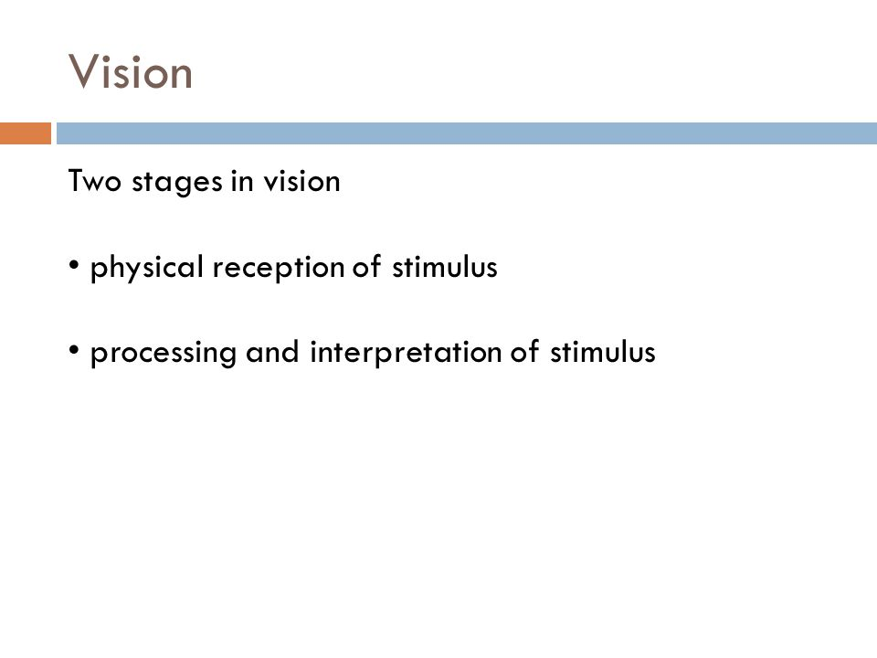 Template Matching Theory  An image generated from a stimulus is matched to an internal representation called a template.