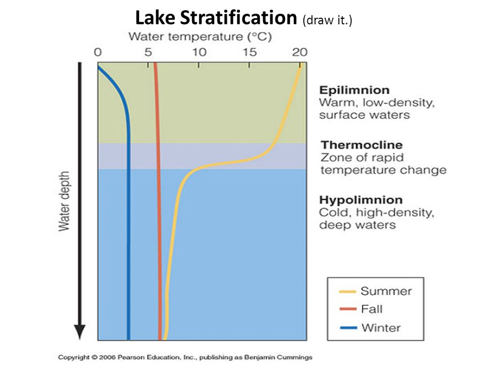 Lake Stratification (draw it.)