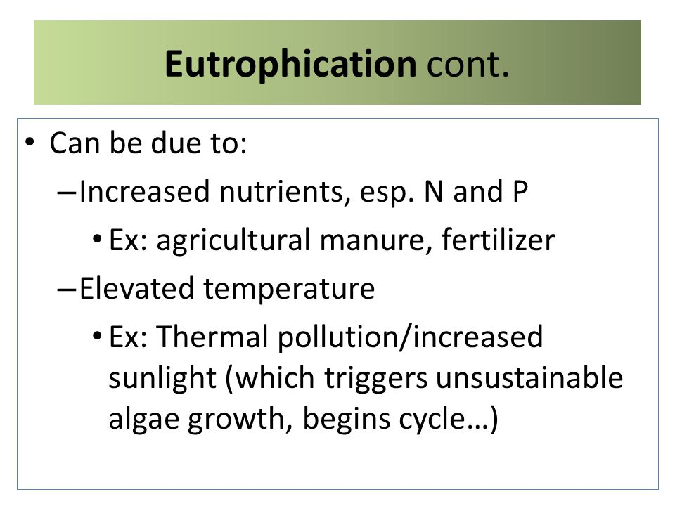 Eutrophication cont. Can be due to: – Increased nutrients, esp.