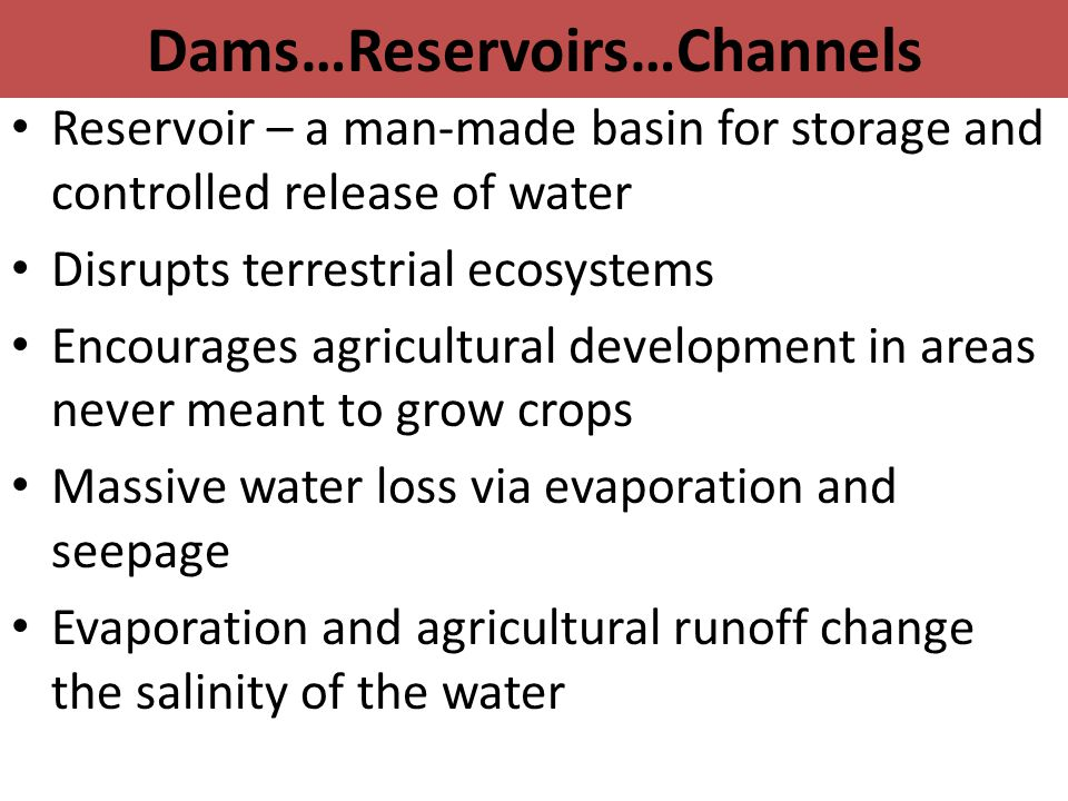 Dams…Reservoirs…Channels Reservoir – a man-made basin for storage and controlled release of water Disrupts terrestrial ecosystems Encourages agricultural development in areas never meant to grow crops Massive water loss via evaporation and seepage Evaporation and agricultural runoff change the salinity of the water