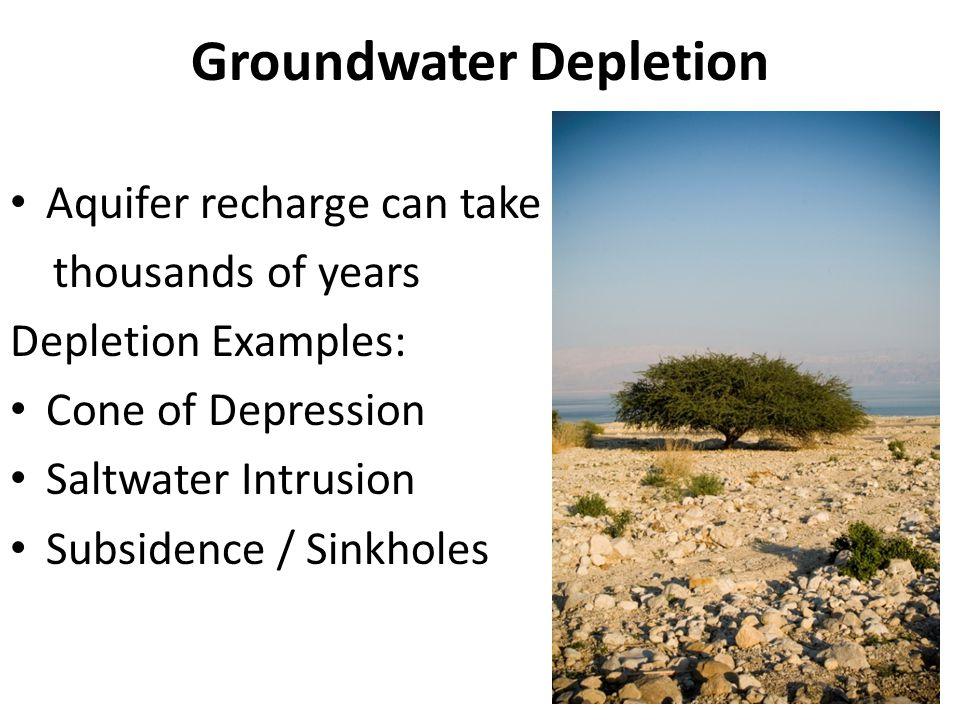 Lake Stratification (draw it.)
