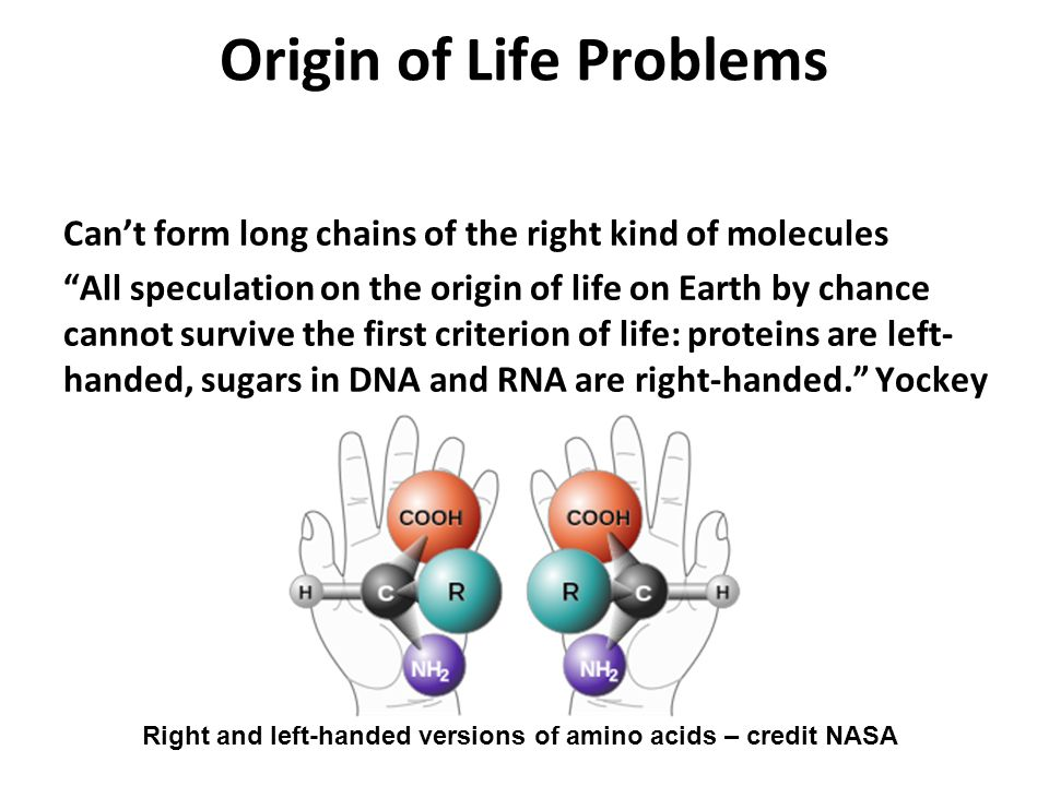 "Origin of Life Problems Can't form long chains of the right kind of molecules ""All speculation on the origin of life on Earth by chance cannot survive"