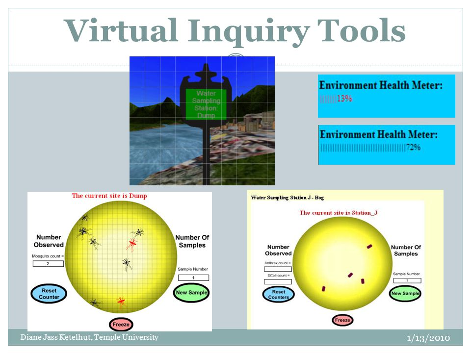Virtual Inquiry Tools Diane Jass Ketelhut, Temple University 1/13/2010