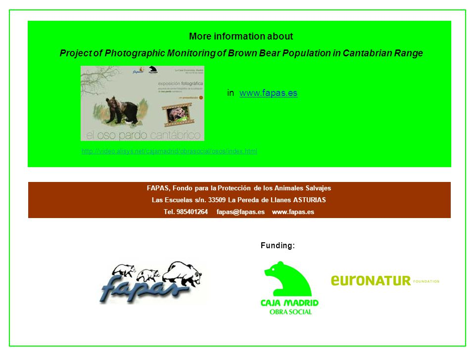 Funding: More information about Project of Photographic Monitoring of Brown Bear Population in Cantabrian Range http://video.alisys.net/cajamadrid/obr