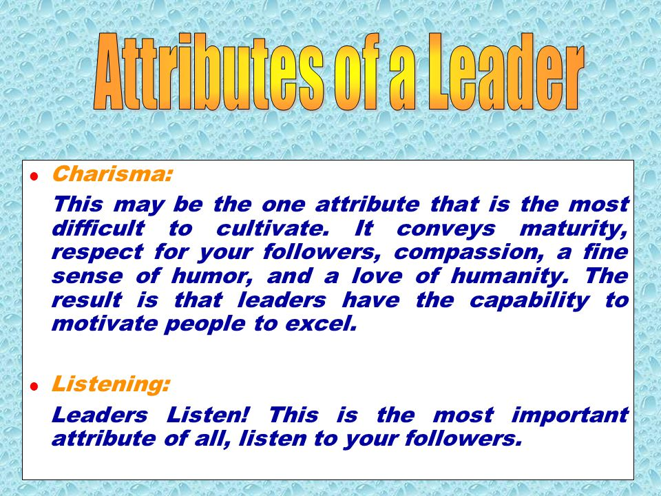 A Leader: sets direction, gives guidance, and motivates people to accomplish carries out the will of the group is the champion for the cause of the group.