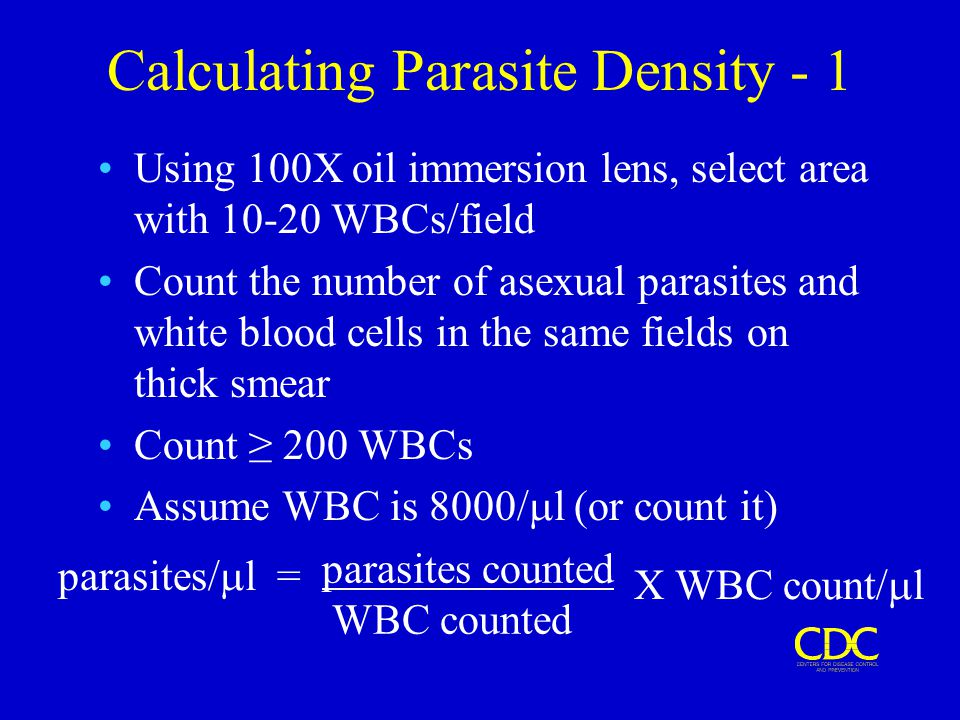 Calculating Parasite Density - 1 Using 100X oil immersion lens, select area with 10-20 WBCs/field Count the number of asexual parasites and white bloo