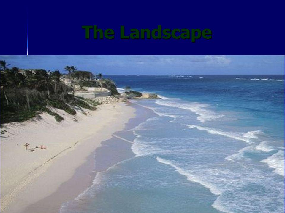 The Landscape The Landscape