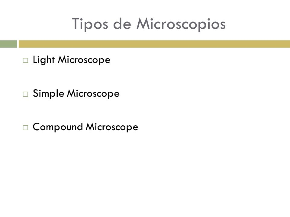  Light Microscope  Simple Microscope  Compound Microscope