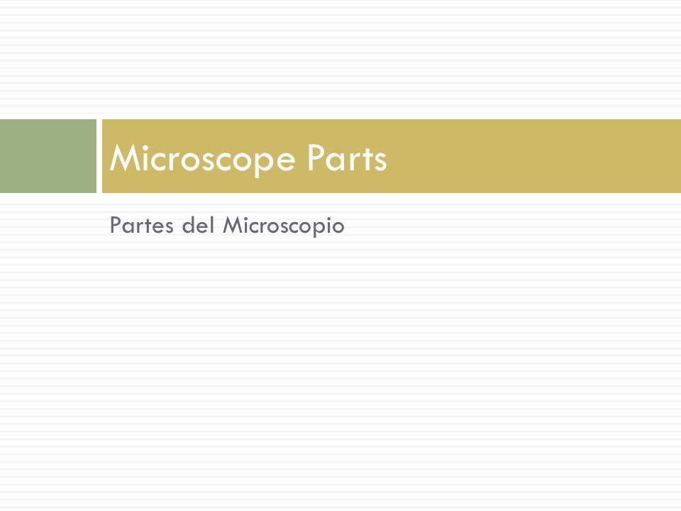 Partes del Microscopio Microscope Parts