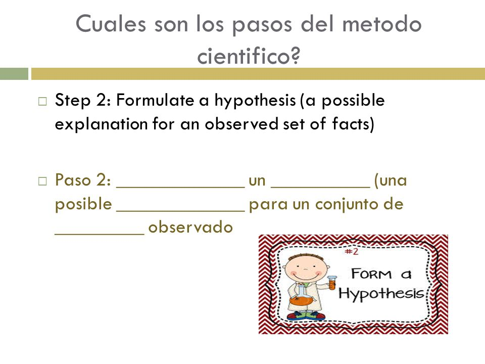 Cuales son los pasos del metodo cientifico?  Step 2: Formulate a hypothesis (a possible explanation for an observed set of facts)  Paso 2: _________