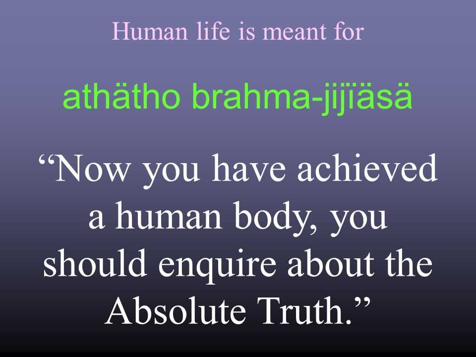 Human life is meant for Now you have achieved a human body, you should enquire about the Absolute Truth. athätho brahma-jijïäsä