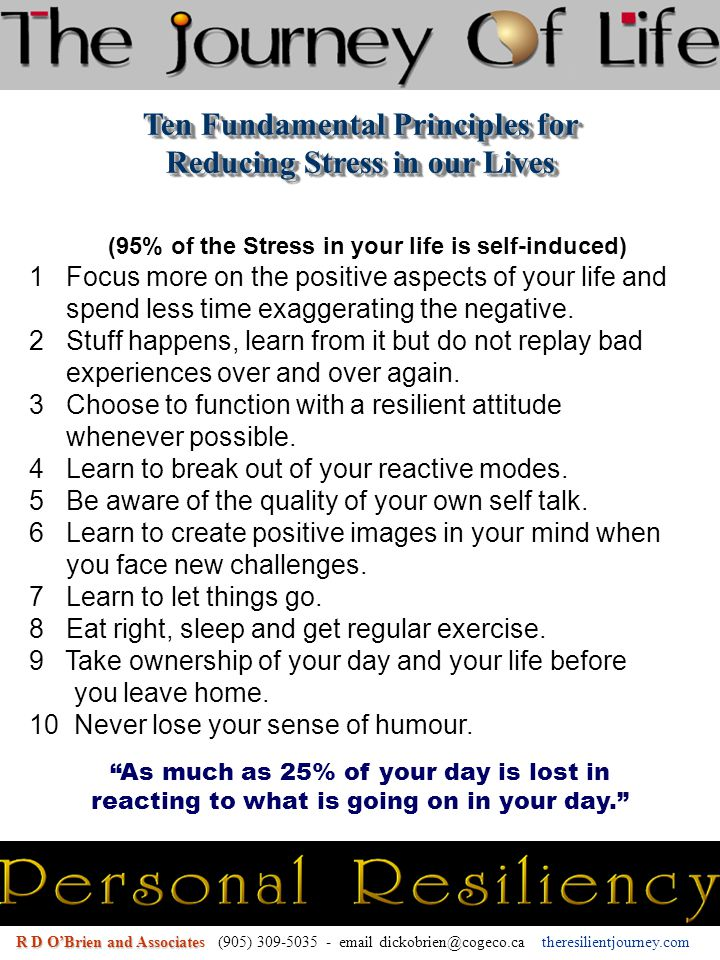 (95% of the Stress in your life is self-induced) 1 Focus more on the positive aspects of your life and spend less time exaggerating the negative.