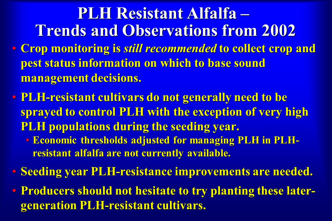 PLH Resistant Alfalfa – Trends and Observations from 2002 Crop monitoring is still recommended to collect crop and pest status information on which to