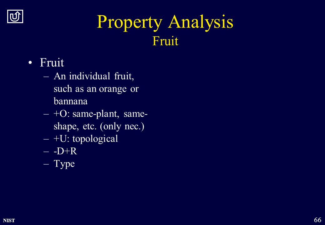 NIST 66 Property Analysis Fruit Fruit –An individual fruit, such as an orange or bannana –+O: same-plant, same- shape, etc.