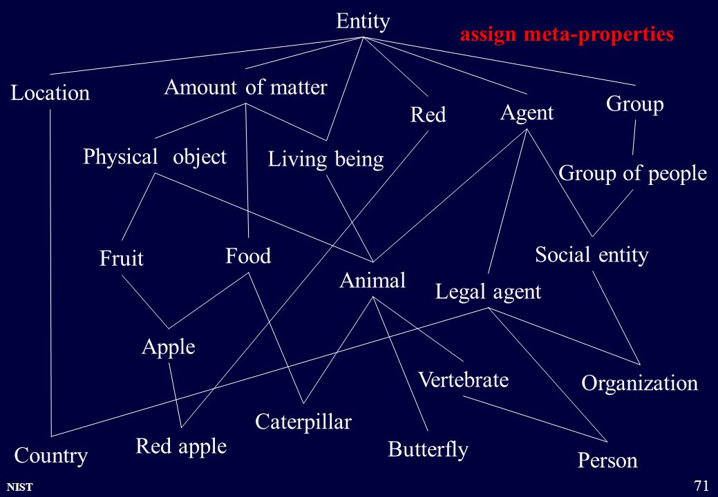 NIST 71 Entity Fruit Physical object Group of people Country Food Animal Legal agent Amount of matter Group Living being Location Agent Red Red apple Person Vertebrate Apple Caterpillar Butterfly Organization Social entity assign meta-properties