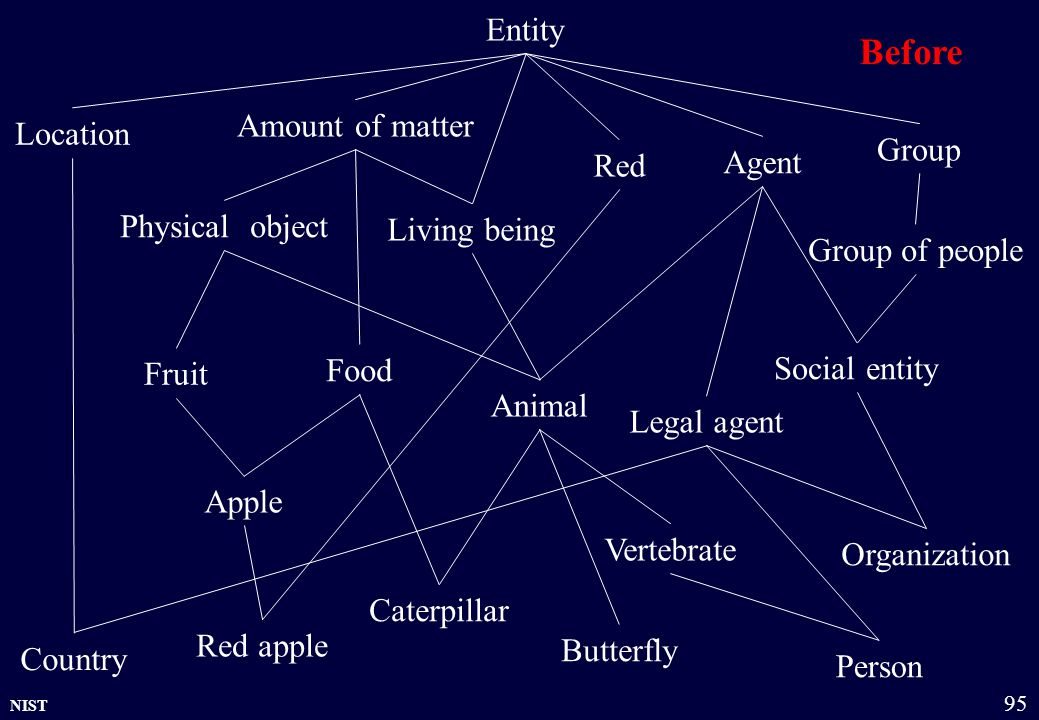 NIST 95 Entity Fruit Physical object Group of people Country Food Animal Legal agent Amount of matter Group Living being Location Agent Red Red apple