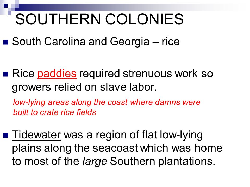 SOUTHERN COLONIES South Carolina and Georgia – rice Rice paddies required strenuous work so growers relied on slave labor. Tidewater was a region of f