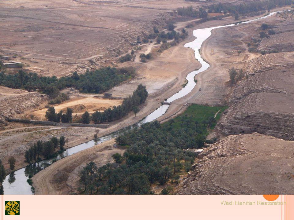 18 Wadi Hanifah Restoration