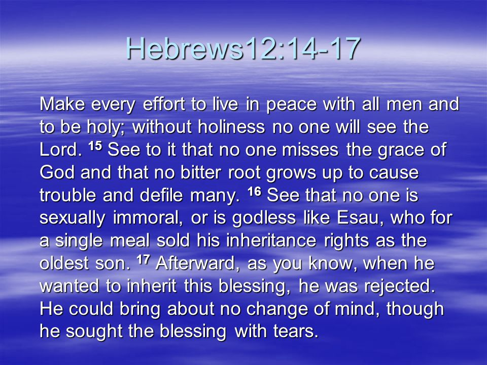Hebrews12:14-17 Make every effort to live in peace with all men and to be holy; without holiness no one will see the Lord. 15 See to it that no one mi