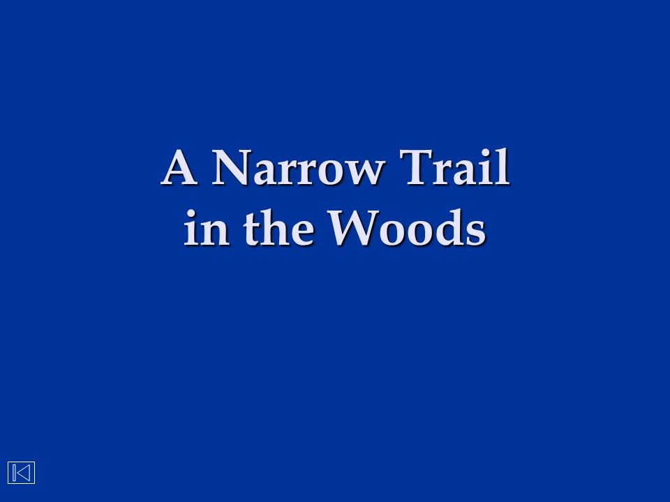 A Narrow Trail in the Woods