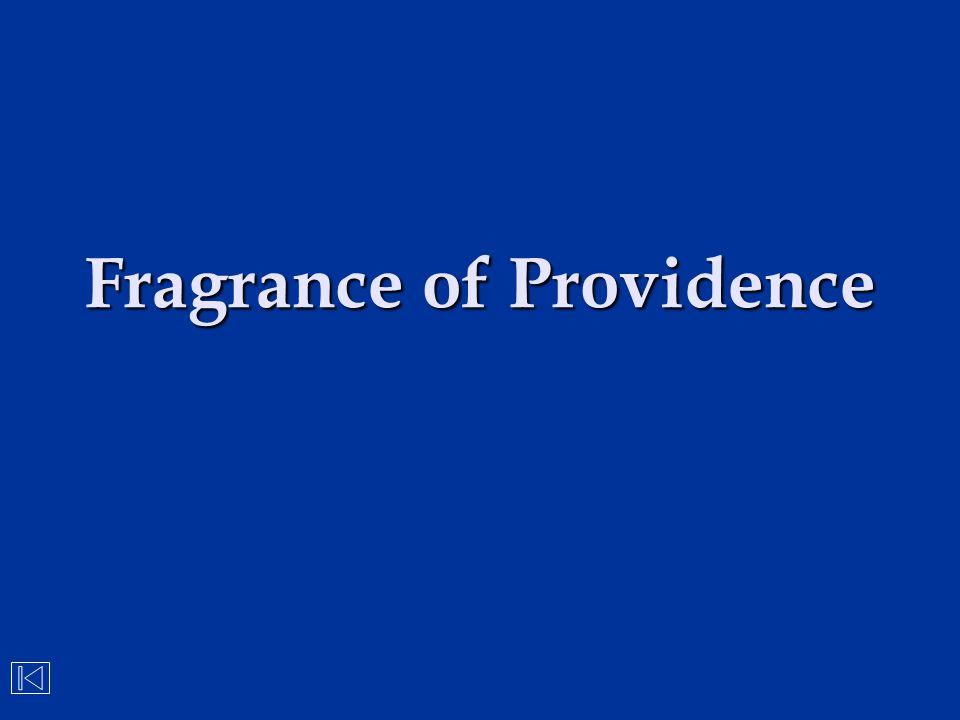 Fragrance of Providence
