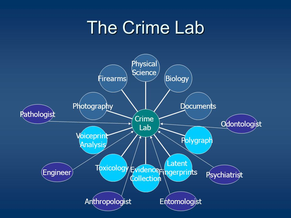 The Crime Lab Firearms Photography Voiceprint Analysis Toxicology Evidence Collection Latent Fingerprints Polygraph Documents Biology Physical Science Crime Lab Psychiatrist Odontologist EntomologistAnthropologist Pathologist Engineer