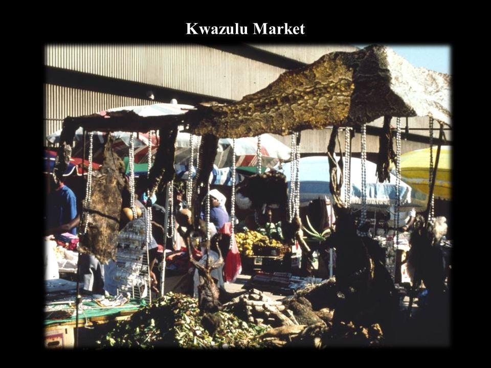 Kwazulu Market